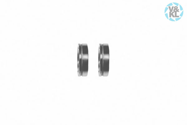 Bearing Set for Kavo 24LN/25LH/25LHA head gear